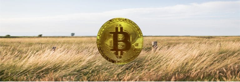 breez bitcoin payment