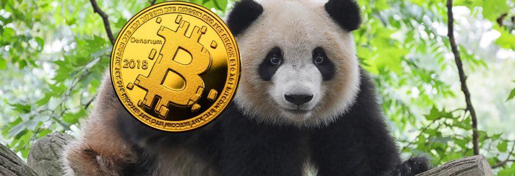panda bitcoin schritt