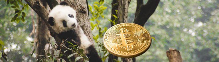 panda bitcoin bitpanda