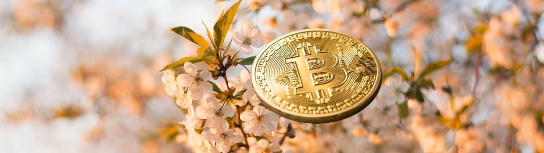 april bitcoin krypto