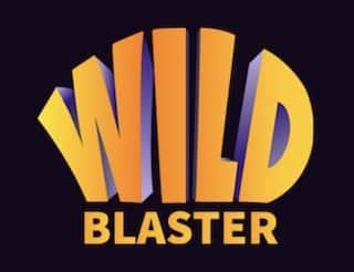 wildblaster logo